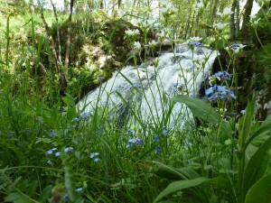 Cascade du Gour des Chevaux